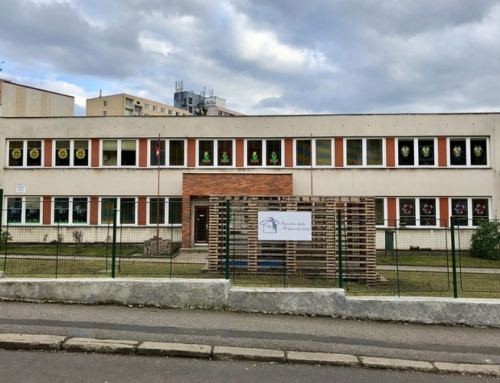 Prohlášení ředitelky školy …
